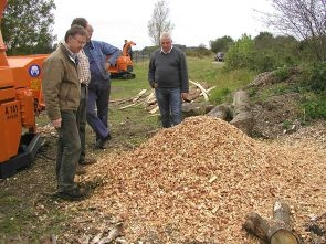 Wood+chips+from+A141