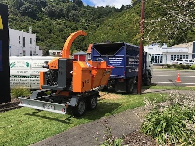 "A425 Jensen 8"" Chipper 6"